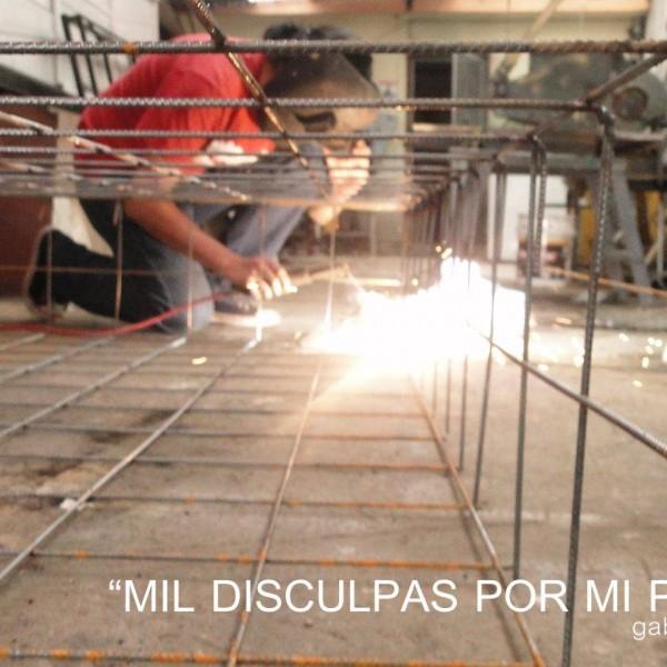 MIL DISCULPAS POR MI PRESENCIA MONTAJE  PH : Gabriel Arroyo