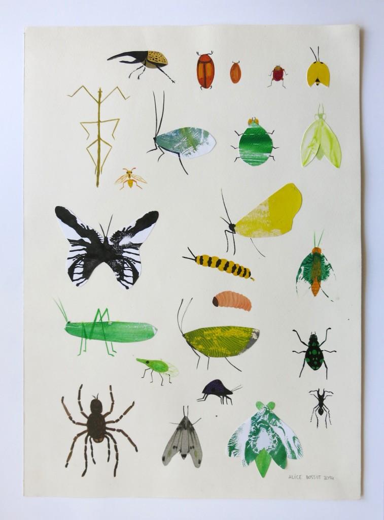 Alice Bossut -insectos