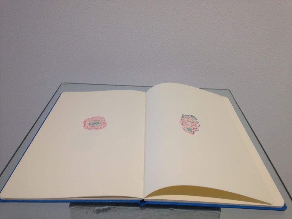 Obra David Cevallos, cuaderno